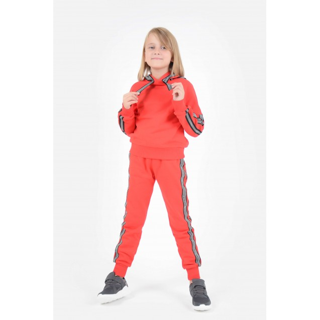 Спортивные штаны 500-11 (фото)